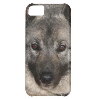 Norwegian Elkhound iPhone 5C Cases