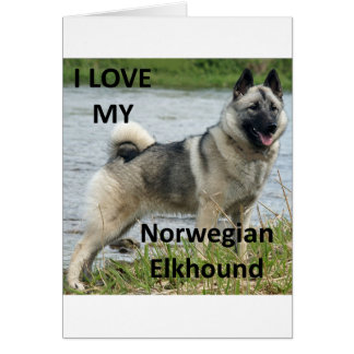 norwegian elkhound love with picture greeting card