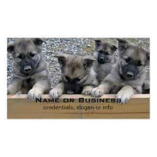 Norwegian Elkhound Puppies Pack Of Standard Business Cards