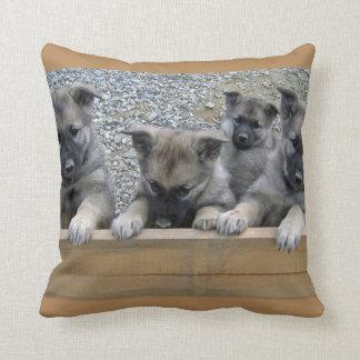 Norwegian Elkhound Puppies Throw Pillow