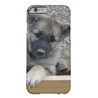 Norwegian Elkhound Puppy Barely There iPhone 6 Case