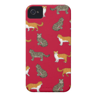 Norwegian forest cat selection iPhone 4 case