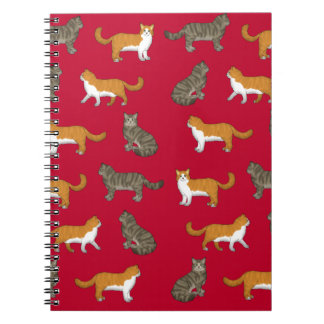 Norwegian forest cat selection notebook