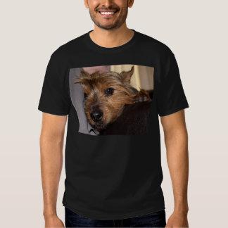 norwich terrier chillin.png t shirt