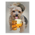 Norwich Terrier Shares A Beer Postcard