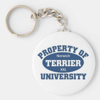 Norwich Terrier University Basic Round Button Keychain