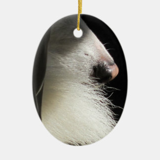 Nose and Tail Ceramic Ornament