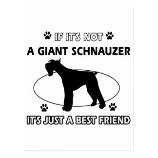 Not a GIANT SCHNAUZER Postcard