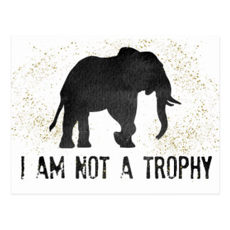 Not A Trophy Elephant Protest Postcard