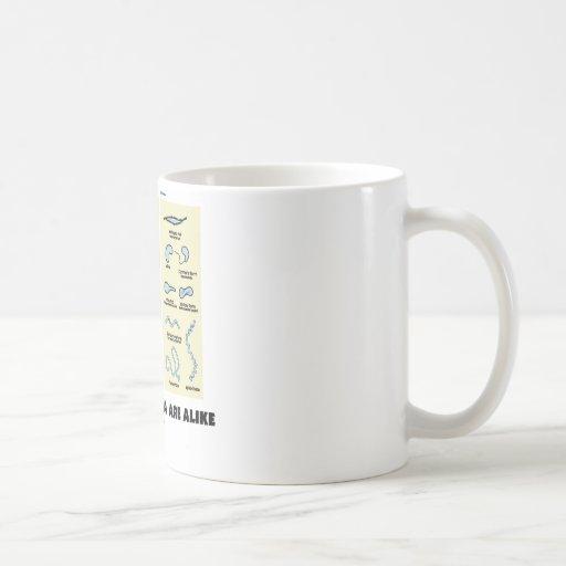 Not All Bacteria Are Alike (Bacterial Morphology) Coffee Mug