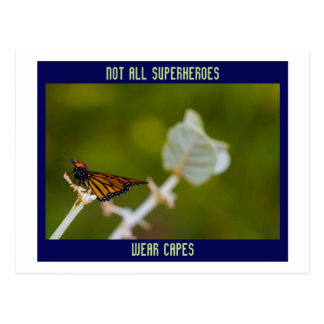 Not all Superheroes Wear Capes Monarch Butterfly Postcard