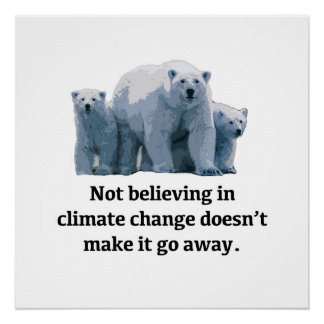 Not believing in climate change doesn't make it go poster
