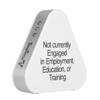 Not currently Engaged in Employment Speaker