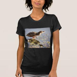 Not Duck T-Shirt