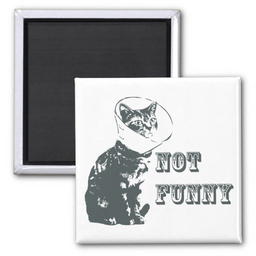 Not Funny Refrigerator Magnets