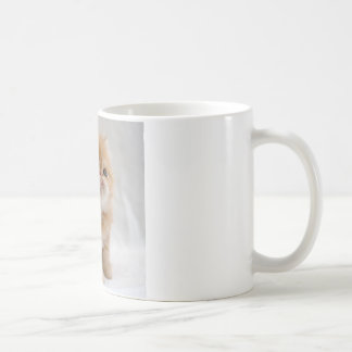 Not Me! Feisty Orange Persian Kitten Coffee Mug