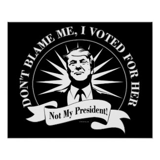Not My President! Poster