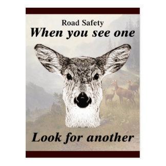Not One Deer Postcard