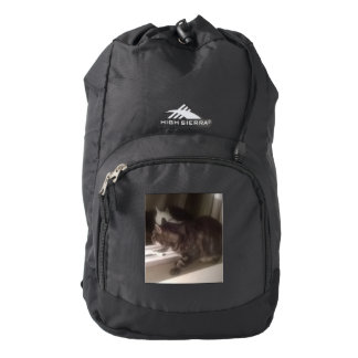 Not Talking to you Dave High Sierra Backpack