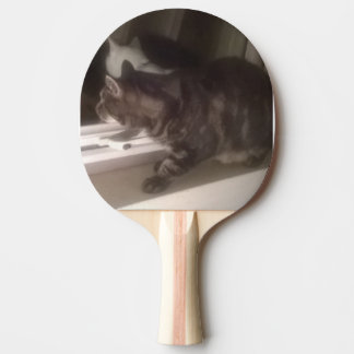 Not Talking to you Dave Ping Pong Paddle