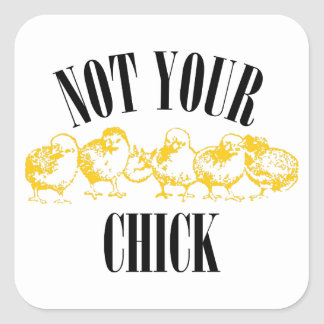 Not Your Chick Stickers