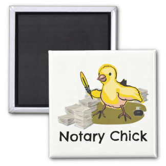 Notary Chick with Feather Quill and Documents Magnet