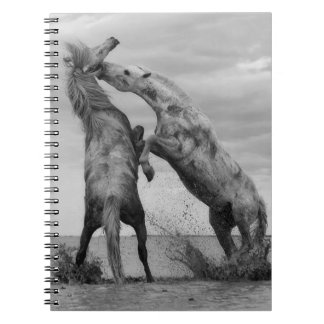 Note book black and white with horses motive