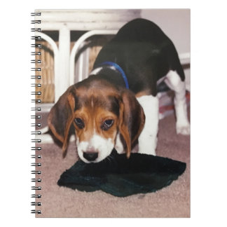 Note book with beagle puppy photo