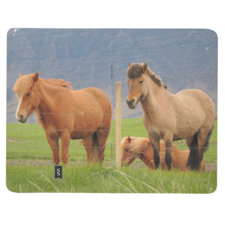Note Book With Icelandic Horses and Houses Picture Journals