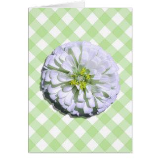Note Card - Lemony White Zinnia on Lattice