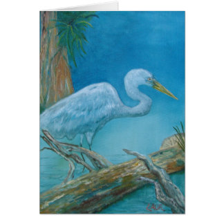 Note Card - White tropical bird in the Everglades
