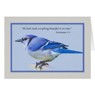 Note Card with Blue Jay Bird