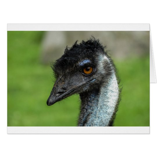 Note card with emu head