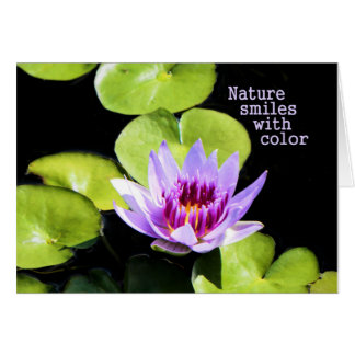 Note Card with Purple Water Lily