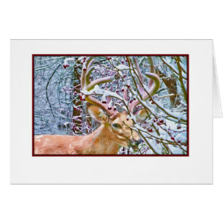 Note or Greeting Card with Deer and Crab Apples