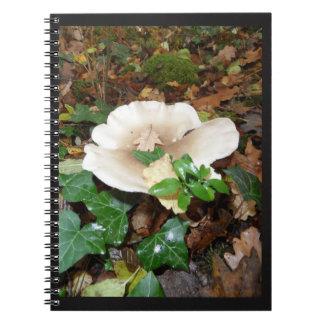 notebook autumn mushroom sheets wood foams