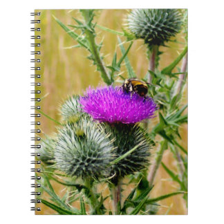 Notebook Bee on Thistle