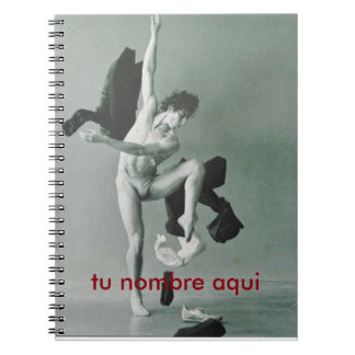 notebook Dancer of the Air