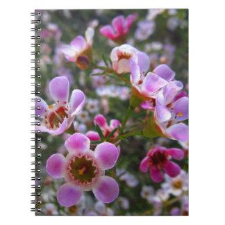 Notebook / Personal Journal - pink manuka flowers