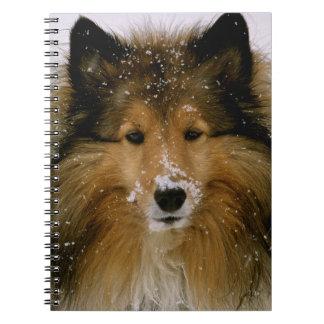 Notebook - Shetland Sheepdog in Snow