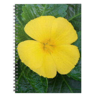 Notebook - West Indian Holly