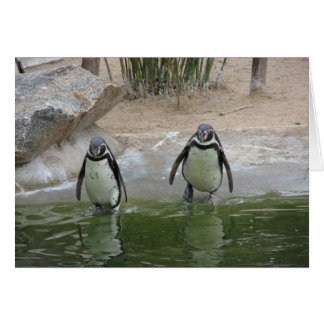 Notecard-Animals-Penguin Pair Card