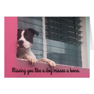 Notecard-missing you like a dog card
