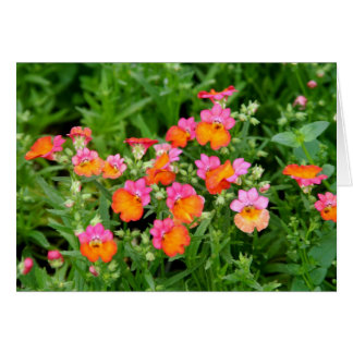 Notecard Pink and Orange Flowers