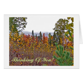 NOTECARD/THINKING OF YOU/AUTUMN COLORS AND TEXTURE CARD