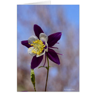 Notecard with Remembrance Columbine