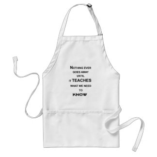 nothing ever goes away until it teaches what we standard apron