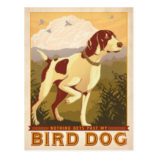 Nothing Gets Past My Bird Dog Postcard