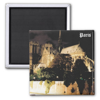 Notre Dame at night.  Paris, France. Magnet