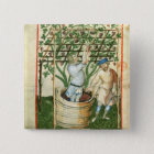 Nouv Acq Lat Gathering and pressing grapes 2 Inch Square Button